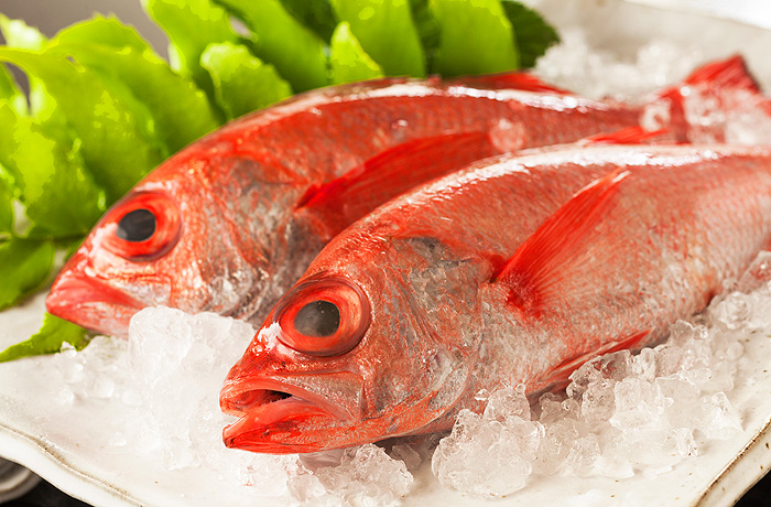 幻の高級魚「のど黒」