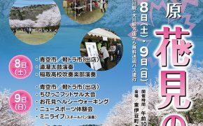 稲取高原 花見の宴